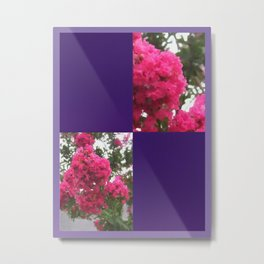 Crape Myrtle Blank Q9F0 Metal Print