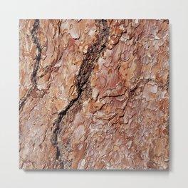 Tree Bark C Metal Print
