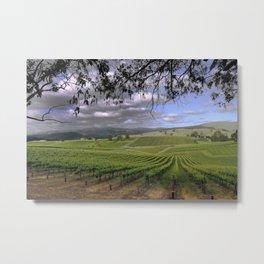 Stormy Day in the Vineyard Metal Print