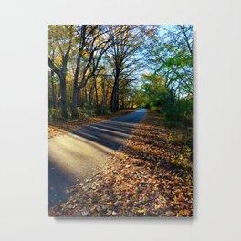 Autumn Drive through the Woods Metal Print