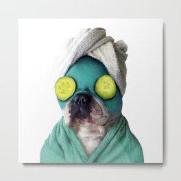 Dog SPA Art Print Metal Print