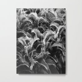 Forest of Palms Metal Print