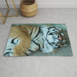 Sleepy Bengal Tiger Rug