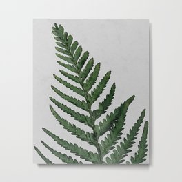 Botanical Forest Sage Green Vintage Leaf Fern, Watercolor Wall Art Farmhouse Rustic Country Nature Metal Print