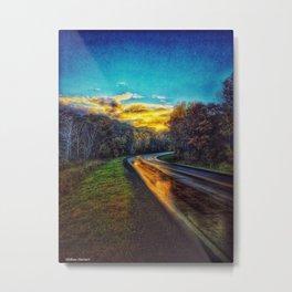 Country road Metal Print
