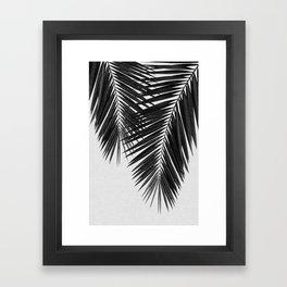 Palm Leaf Black & White II Framed Art Print