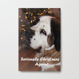 St Bernard dog at Christmas Metal Print
