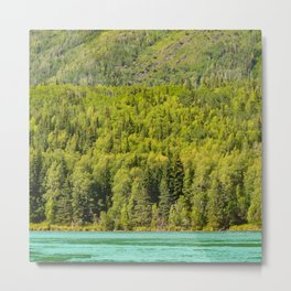 Alaskan Autumn - Painting 2 Metal Print