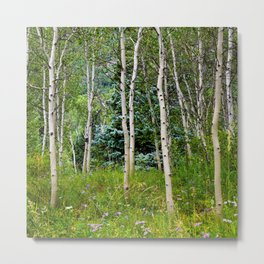 Etherial Aspen Metal Print