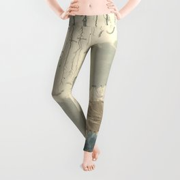 1854 Comparative Lengths of Rivers and Heights of Mountains Leggings