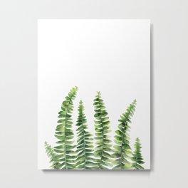 Fern watercolour Metal Print