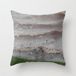 Evening Seaguls Throw Pillow