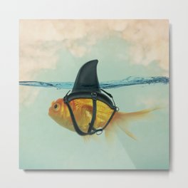Brilliant DISGUISE - Goldfish with a Shark Fin Metal Print