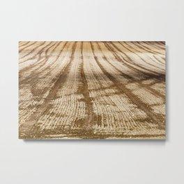plowed field Metal Print