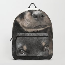 Rottweiler puppy Backpack