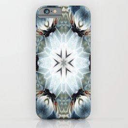 Celtic Lore iPhone Case