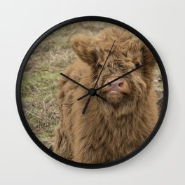 Scottish Highland baby cow Wall Clock