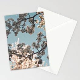 Look up! Look out! White Blossom and the Blue Sky Stationery Cards