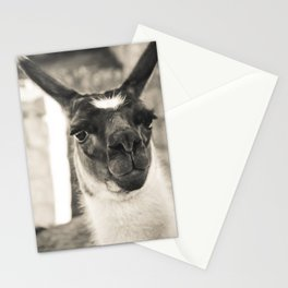 106 Stationery Cards