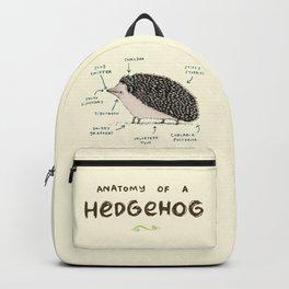Anatomy of a Hedgehog Backpack