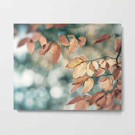 Teal Brown Nature Photography, Aqua Blue Copper Leaves, Turquoise Leaf Tree Branches, Fall Autumn Metal Print