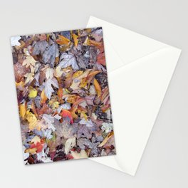leaf litter menagerie Stationery Cards
