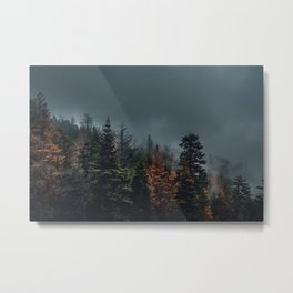 Where the Forest and Fog Become One Metal Print