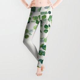 Eucalyptus Watercolor Leggings