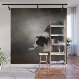 Ready to Play - Border Collie Wall Mural
