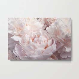 Floral Photography | Peony Pink Cluster | Flowers | Botanical | Plant Metal Print