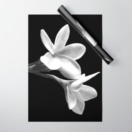 White Flowers Black Background Wrapping Paper
