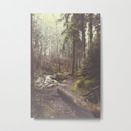 The paths we wander Metal Print