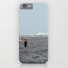 Seagulls at the inlet iPhone Case