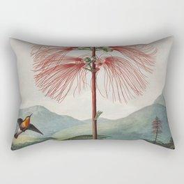 Flowering Sensitive Plant from The Temple of Flora (1807) by Robert John Thornton. Rectangular Pillow