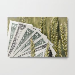 ear of wheat Metal Print
