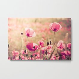 Heaven - poppy flowers photography Metal Print