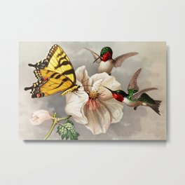 Ruby-throated Hummingbirds & Butterfly Portrait Metal Print