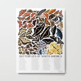 Butterflies of North America Metal Print