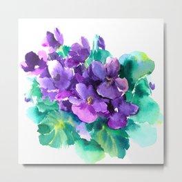 Violet Flowers  Sainpaulia African Violets violet purple yellow floral decor Metal Print