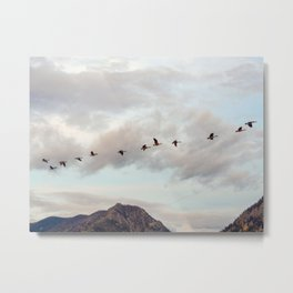 Migration of the Birds // Mountain and Sky Meets Nature Landscape Photography of Wildlife Metal Print