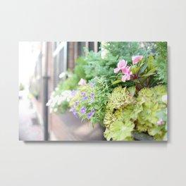 window flower Metal Print