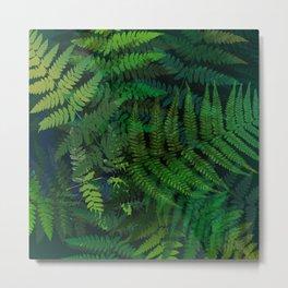 Forest fern Metal Print