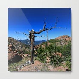 Watercolor Landscape, Lost Creek Wilderness 18, Colorado Metal Print