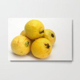 Guava fruits Metal Print