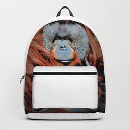 Rudi Valentino Backpack