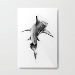Shark II Metal Print