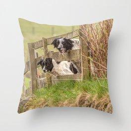 Countryside farm sheep dogs Throw Pillow