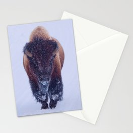 Bison In Snow Stationery Cards