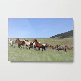 Running Horses Photography Print Metal Print