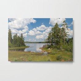 Just Sweden Metal Print